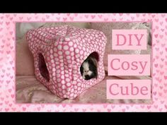 DIY Guinea Pig Cosy Cube Tutorial - This would be great for chinchillas and other small pets too. Diy Guinea Pig Toys, Pet Guinea Pigs, Guinea Pig Care, Pet Pigs, Cage Rat, Guinea Pig Accessories, Diy Cat Bed, Guniea Pig, Guinea Pig Bedding