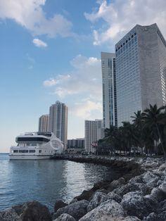 Living my life Explore Travel, New York Skyline, Miami, My Life