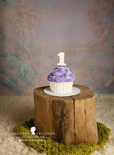 Jeneanne Ericsson Photography » purple fairy themed first birthday cake smash