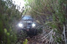 grubbybuz's Land Rover Defender - Page 10
