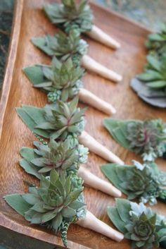 Succulent boutonnieres by bohemianbouquets