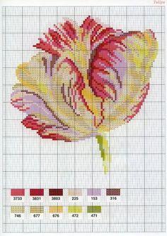 [flor-ponto-cruz-grafico-2%255B3%255D.jpg]