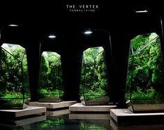 Pre-order: The Vertex ZERO L Pre-designed Completed | Etsy Terrariums, Moss Terrarium, Moss Wall, Door Steps, Unique Trees, Glass Vessel, Lights Background, Nice View, Glass Door