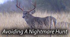 Avoiding a Nightmare Hunt thumbnail