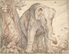 File:Roelant Savery - An Elephant Rubbing Itself against a Tree, c. 1608-1612 - Google Art Project.jpg