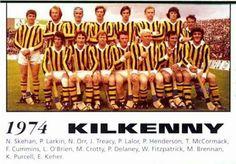 1974 Kilkenny Team Ireland, Irish
