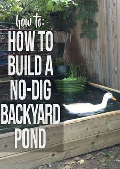 Instructions for building a backyard pond with no kit and no digging required - Modern Design Backyard Ducks, Ponds Backyard, Chickens Backyard, Backyard Waterfalls, Garden Ponds, Backyard Farming, Patio Pond, Herb Garden, Raising Ducks