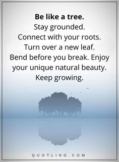 Life Lessons | Be like a tree. Stay grounded. Connect with your roots. Turn over a new leaf. Bend before you break. Enjoy your unique natural beauty. Keep growing.
