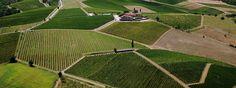 Tuscany Accommodations: Agriturismo,B, Villa Rentals in Tuscany, Italy