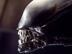 Interesting facts about the film Aliens (17 Photos) : theCHIVE