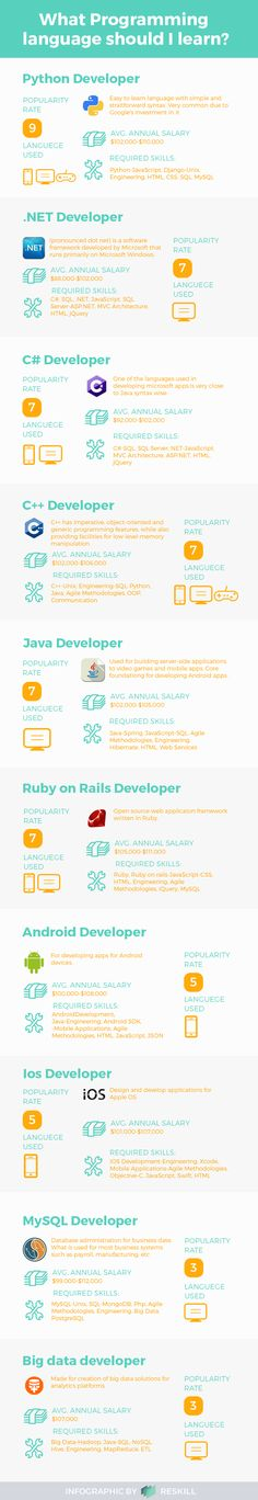 What Programming language should I learn infographic