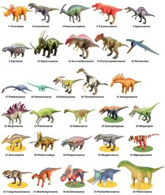Sega Dinosaur King Large Dinosaurs Names And Pictures, Names Of Dinosaurs, Dinosaur Pictures, Jurassic World Dinosaurs, Dinosaur Alphabet, Dinosaur Posters, Dinosaur Age, Dinosaur Nursery, Dinosaur Types