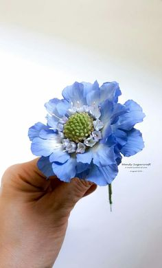 Sugar Paste Flowers, Icing Flowers, Fondant Flowers, Fondant Bow, Fondant Cakes, Fondant Flower Tutorial, Cold Porcelain Flowers, Rock Flowers, Paper Flowers Craft