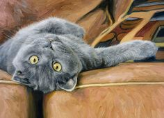 Lucie Bilodeau и ее любимые кошки. Обсуждение на LiveInternet - Российский Сервис Онлайн-Дневников