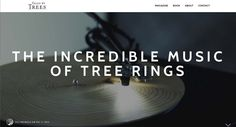 The Incredible Music of Tree Rings - Tales by Trees Tree Rings, Record Player, Simply Beautiful, Articles, At Least, Trees, The Incredibles, Thoughts, Reading