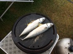 Cobb grilled mackerel Grill Pan, Campsite, Grilling, Cooking, Griddle Pan, Kitchen, Camping, Grill Party