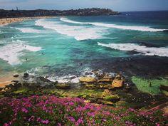 Bondi beach #springday #bondi #bondibeach #bondibeachsydney #beach #theview #ocean #rockpool #sydney #sydneylife #springtime #australia by natalie_nurse6 http://ift.tt/1KBxVYg