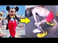 【衝撃】ディズニーランドの裏側6選。ミッキーの中身は… - YouTube