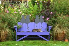 cat bench with cat