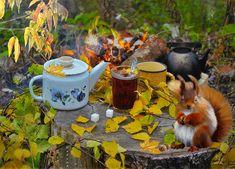 Фото, автор НаташА на Яндекс.Фотках