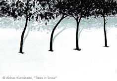 """Trees in Snow"" - Abbas Kiarostami"