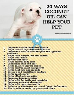 I have 2 shar pei this is Coconut oil is used for everything, very good to moisturiser there wrinkles, there ears inside get dry and full so I use this also. Apply with a massage after a bath makes there coat look shiny and feel soft.