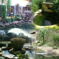Koi ponds by Designer Gardens Landscaping www.designergardenlandscaping.co.za in Centurion