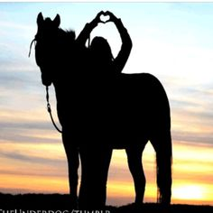 For the ♥ of horses