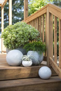 """The editors added visual intrigue by mixing in sculptural elements in the form of round planters made from a variety of materials. Lauren suggested looking """"beyond pots of flowers that take a ton of water to add a real stylish element to your yard. Side Garden, Garden Pool, Plant Design, Garden Design, Container Gardening, Gardening Tips, Drought Tolerant Garden, House Landscape, Decks And Porches"""