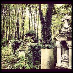 Cmentarz-park, z serii creepy, ale i bardzo piękny, warto się wybrać na spacer!! Tylko lepiej nie samemu, można się porządnie wkręcić.
