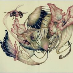 Marco Mazzoni | the mimicry,  colored pencil- I enjoy the delicate handling of the medium in this piece. It correlates with the natural subject matter. The artist makes an interesting comparison of the relationships between these plants and animals.