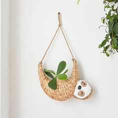 Woven Novelty Sloth Catchall   Pottery Barn Teen Decorative Storage Bins, Storage Baskets, Decorative Objects, Tassel Garland, Pottery Barn Teen, All Gifts, Room Accessories, Hanging Planters, Best Face Products