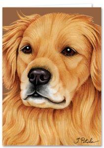 Golden Retriever Greeting Card Golden Retriever Gifts Big Dogs