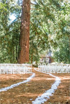 Wedding under a tree and lined aisle. Venue: Historic Sand Rock Farms ---> http://www.weddingchicks.com/2014/05/15/romantic-wedding-under-the-trees/