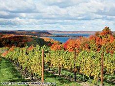 cherry beach lake michigan | Chateau Grand Traverse vineyard on Lake Michigan