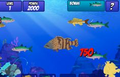 Wild Kratts Coral Reef game - great episode for marine unit available