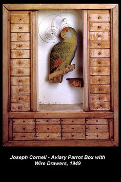Joseph Cornell – Aviary Parrot Box with Wire Drawers, 1949