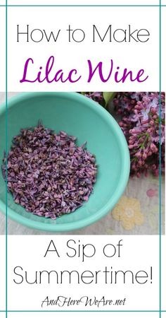Making Lilac Wine  And Here We Are...