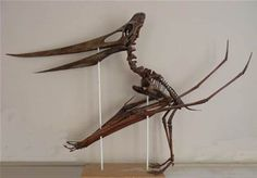 Resultado de imagem para pteranodon fossils