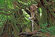 #流木オブジェ 1999年~2002年撮影 流木アート-19  ★  #流木 #流木アート #屋久島 アート #インテリア #Driftwood Art #Interior