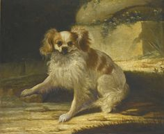 Jacques-Charles Oudry -  PARIS 1720 - 1778 LAUSANNE -   A PORTRAIT OF A BROWN AND WHITE TOY SPANIEL IN A LANDSCAPE -     signed and dated lower right: J.C. Oudry / 1761, oil on canvas.  54.2 by 65.3 cm.; 21 1/2  by 25 3/4  in.