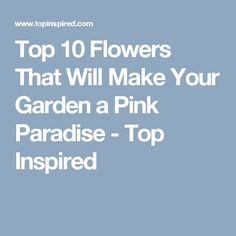 Top 10 Flowers That Will Make Your Garden a Pink Paradise - Top Inspired