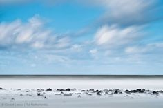 Exposed - Gerard Leeuw - Wildlife Photographer of the Year 2013: Wildscapes - Commended
