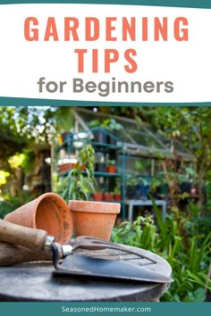 Are you a Beginning Gardener? It's time to start planning your spring garden and I have a few Gardening Tips for Beginners that will help you get you on the right path. Your first vegetable garden is sure to be a success! #gardeningtips #beginnergardening Vegetable Garden For Beginners, Starting A Vegetable Garden, Gardening For Beginners, Sewing For Beginners, Gardening Tips, Vegetable Gardening, Easy Sewing Projects, Fun Projects, Sewing Tutorials