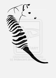 Thylacine Tattoo by Irridescent on DeviantArt Drawing Rocks, Tiger Drawing, Tasmanian Tiger, African Wild Dog, Australia Animals, Simple Line Drawings, Tiger Design, Extinct Animals, Cryptozoology