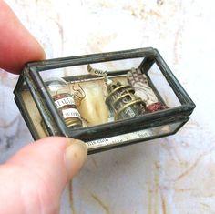 mini museum glass box assemblage
