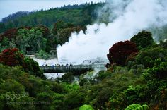 Steaming it up by safekeeping215 from http://500px.com/photo/202786803 - Whakarewarewa (reduced version of Te Whakarewarewatanga O Te Ope Taua A Wahiao meaning The gathering place for the war parties of Wahiao) is a geothermal area within Rotorua city in the Taupo Volcanic Zone of New Zealand. This was the site of the Māori fortress of Te Puia first occupied around 1325 and known as an impenetrable stronghold never taken in battle. Māori have lived here ever since taking full advantage of…