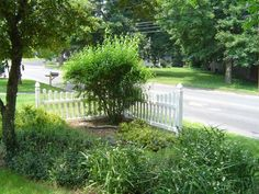 A section of picket fence to tuck a garden into...that's a great idea!