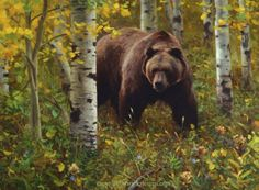 grizzly bear painting by Kyle Sims