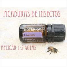 tips & distribuidor doterra ( Doterra Essential Oils, Essential Oil Blends, Terra Oils, Tips Belleza, Natural Oils, Health, Insect Bites, Beauty Routines, Aromatherapy